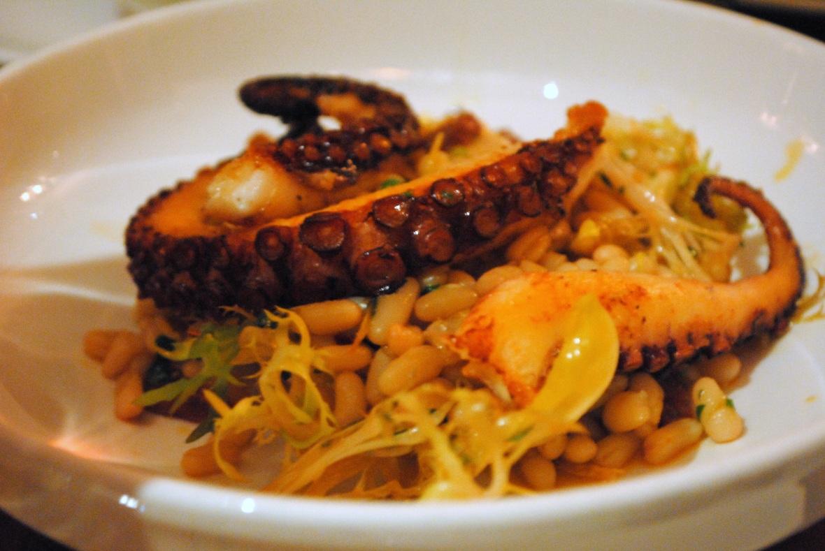octopus dellanima